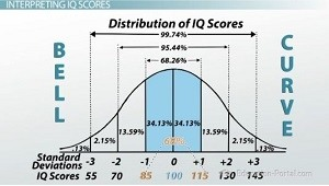 What is the Average IQ Score?